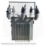 dressed pole transformer