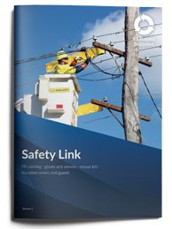 safety link brochure